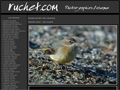 PHOTOGRAPHIE : Claude Ruchet - Photographies d_oiseaux